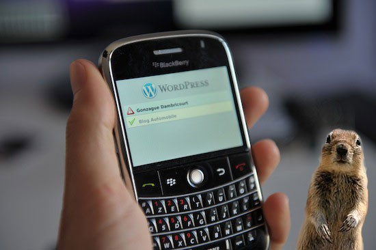 Blackberry for WordPress