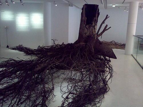 Tronc d'arbre à l'espace electra
